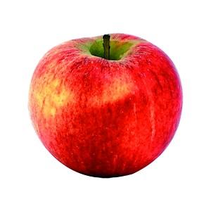 Vinaigre de Pommes  1dl